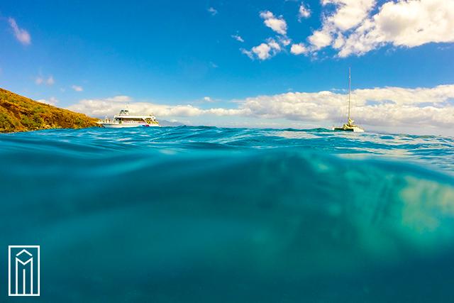 Maritime-Alliance-Member-Spotlight-Fugro-Pelagos